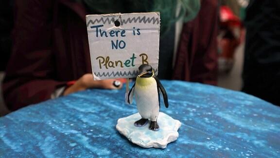 Figur eines Pinguins steht auf blauer Pappe, dahinter eine kleines Schild mit der Aufschrift: There is NO Planet B