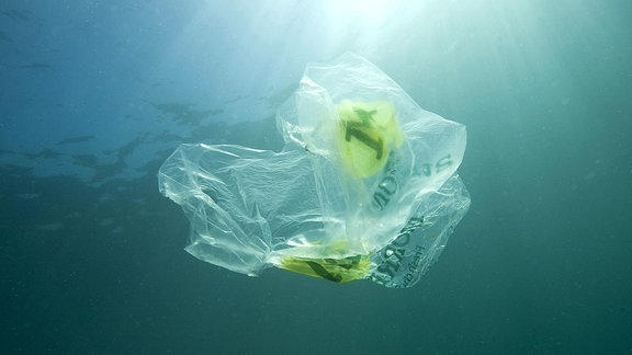Plastiktüte, die im Meer schwimmt und eine Qualle umgibt, Gegenlicht