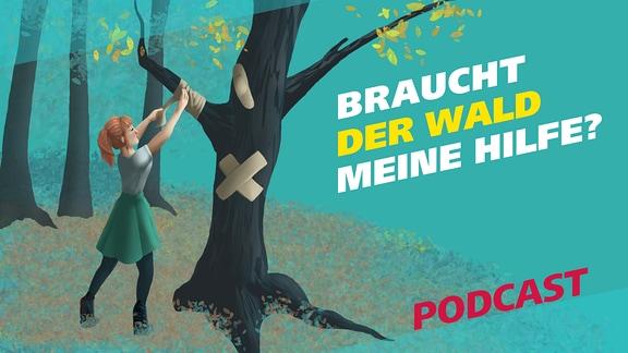 Die Grafik zeigt eine junge Frau, die Pflaster an einen Baum klebt. Daneben steht die Frage: Braucht der Wald meine Hilfe? sowie der Hinweis, dass es sich um einen Podcast handelt.