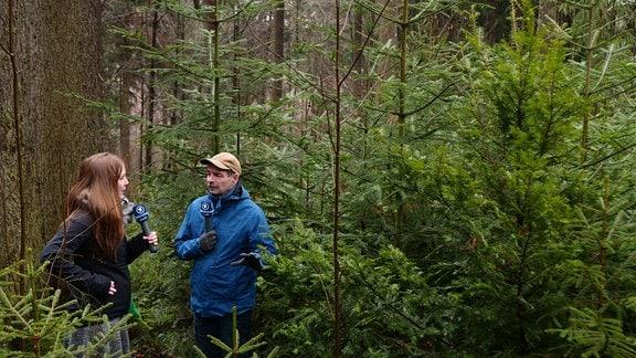 Umgeben von alten Fichten und jungen Weißtannen unterhalten sich MDR-Wissen Reporterin Daniela Schmidt und der Professor für Waldbau Sven Wagner über den Waldumbau im Tharandter Wald bei Dresden.