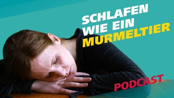 """Reporterin Daniela Schmidt liegt mit ihrem Kopf auf einem Tisch und schläft. Daneben steht der Schriftzug """"Schlafen wie ein Murmeltier""""."""