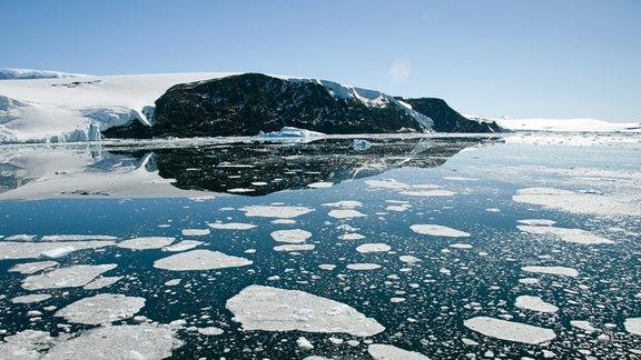 Der Larsen-Gletscher in der Antarktis.