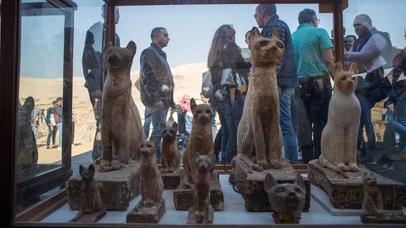 Katzenstatuen aus der Nekropole Sakkara Ägypten
