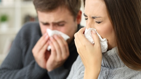 Ein Mann und eine Frau putzen sich die Nasen