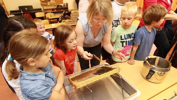 Eltern und Schüler der Grundschule gewinnen Honig und Bienenwachs aus Bienenwaben.