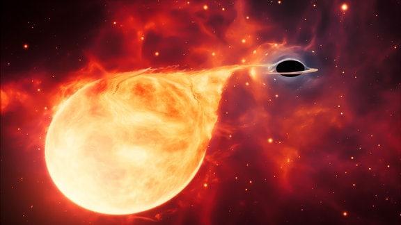 Künstlerische Darstellung eines Sterns, der von einem Schwarzen Loch mittlerer Masse (IMBH) zerrissen wird. Das Schwarzen Loch ist von einer Akkretionsscheibe umgeben. Diese dünne, rotierende Materialscheibe besteht aus den Überresten eines Sterns, der durch die Gezeitenkräfte des Schwarzen Lochs auseinander gerissen wurde.