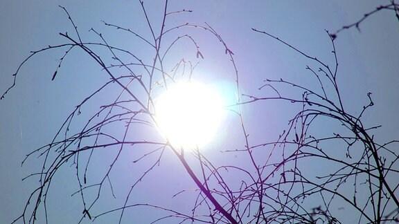 Schlohweiße Sonne am Mittagshimmel