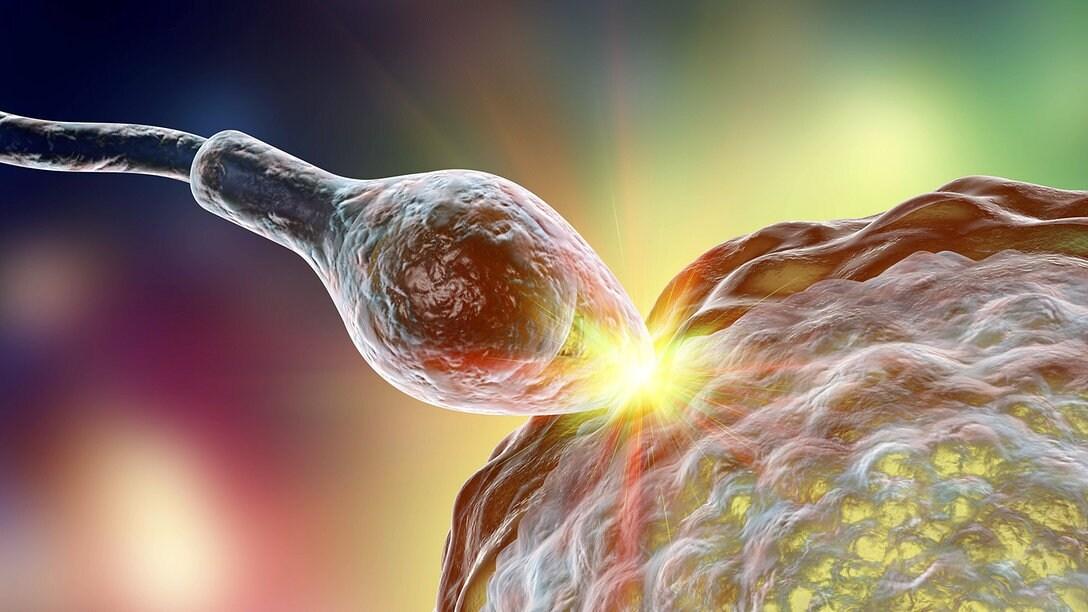 Sperma im urin