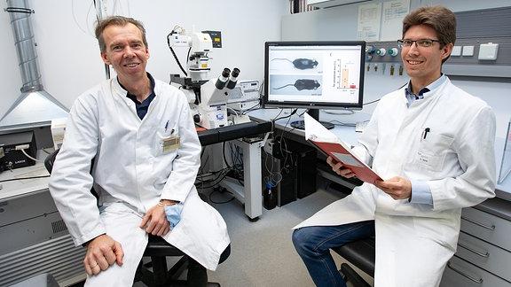 Forscher untersuchen Spermidin