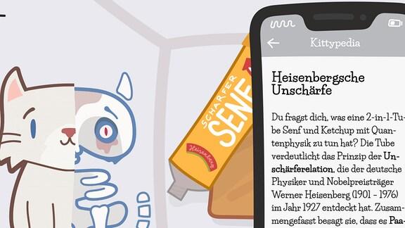 Ein Screenshot einer Erklär-Seite in der Quantenphysik-Spiele-App Katze Q.