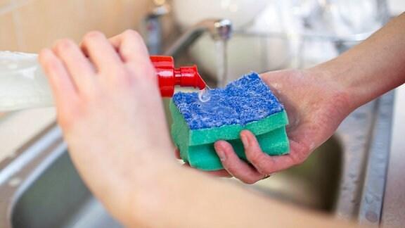 Spülmittel wird auf einen Spülschwamm aufgebracht.