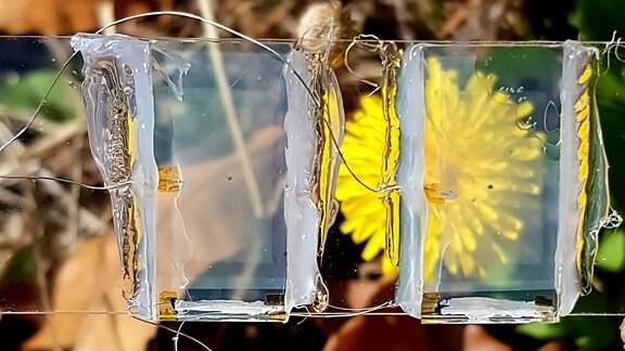 Zwei transparente Blöcke mit mehreren Drähten daran