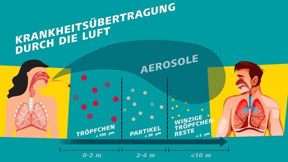 Die Grafik zeigt den Unterschied zwischen Tröpfchen (größer als 100 Mikrometer) und Aerosolen (kleiner als 50 Mikrometer). Aerosole bleiben deutlich länger in der Luft und können daher über größere Distanzen von einem Menschen zum anderen fliegen. Wenn sie Viren enthalten, kann es so zur Infektion kommen.
