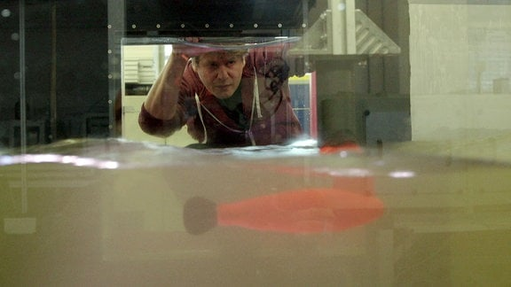 Roboterfisch in einem trüben Wasserbecken. Ein Mann beobachtet durch eine Glasscheibe.