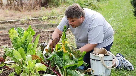 Übergewicht: Mann mit Übergewicht in Gartenarbeit