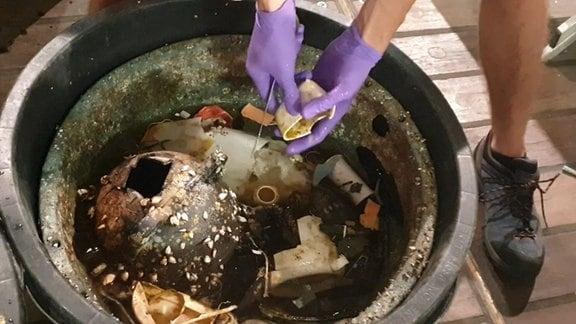 Hände in lila-farbenen Gummihandschuhen waschen Plastikteile, die in einer schwarzen Tonne im Wasser schwimmen.
