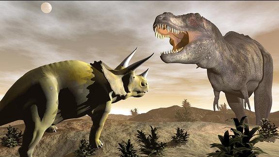 Tyrannosaurus brüllend auf Triceratops