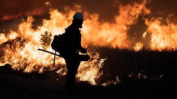 Ein Feuerwehrmann versucht einen Waldbrand zu löschen.