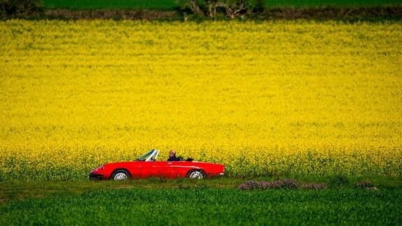 Cabrio auf einer Landstrasse an einem blühenden Rapsfeld
