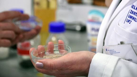 Eine Petrischale mit Mikroplastik in der Hand einer Frau im Laborkittel, die in einem Labor steht