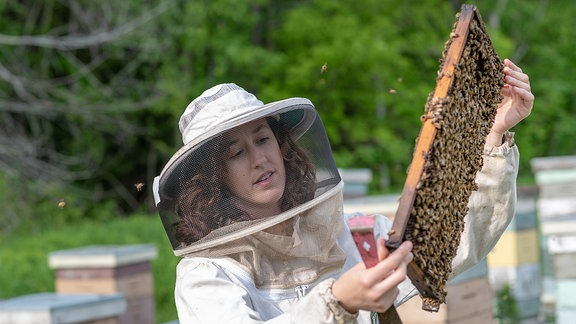 Eine Frau hantiert mit Bienen