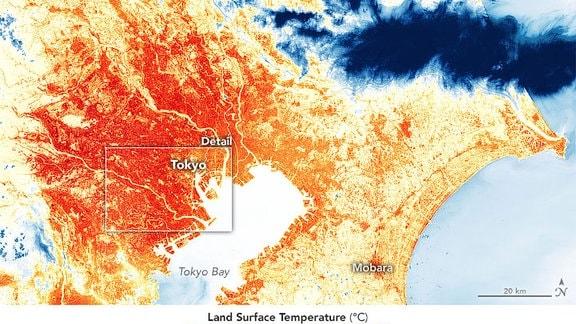 Die Karten oben und unten zeigen den Hitzeinsel-Effekt um Tokio am 17. August 2019.