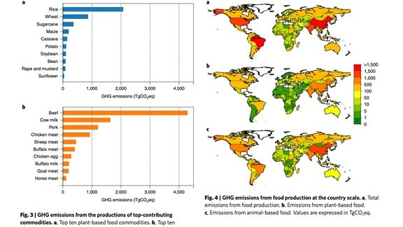 """Grafiken aus der Studie """"Global greenhouse gas emissions from animal-based foods are twice those of plant-based foods""""."""