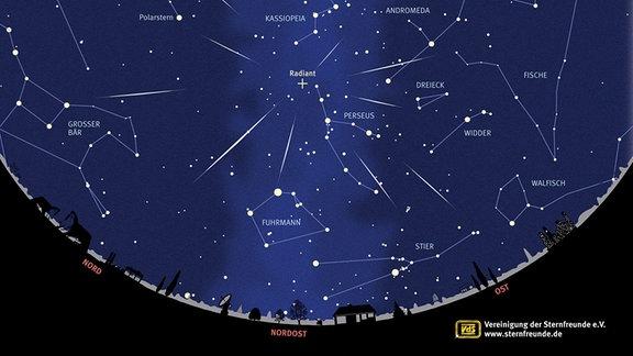 In dieser grafischen Darstellung erkennt man den Nachthimmel um den 12. August herum. In dieser Nacht sind die Sternschnuppen der Perseiden zu sehen. Sie scheinen dem Sternbild Perseus zu entstammen.