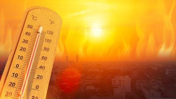 Ein Thermometer zeigt über 40 Grad Celsius