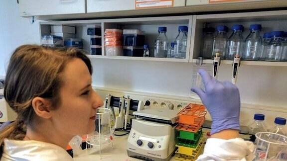 Junge Frau mit dunkelblonden Haaren mit Pferdeschwanz, Laborkittel und Hanschuhen begutachtet eine Probe in einem Labor mit verschiedenen Behältnissen und Geräten. Seitenansicht.