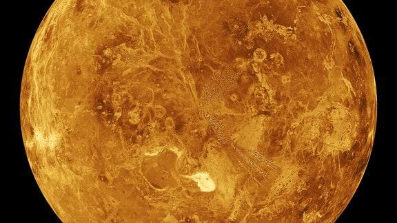 Die nördliche Hemisphäre der Venus als computersimulierter Globus.