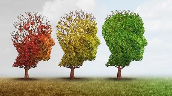 Illustration - Gehirn Alzheimer Demenz Denken Vergesslichkeit