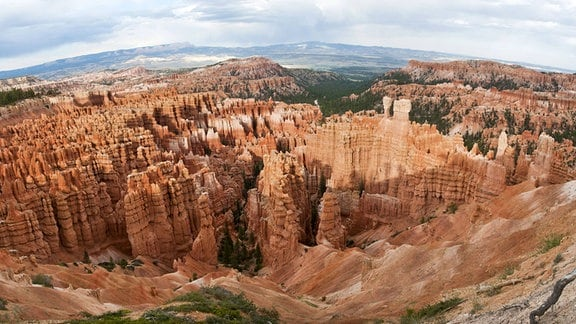 Verwittertes Gestein im Wide angle of a Bryce Canyon National Park Utah
