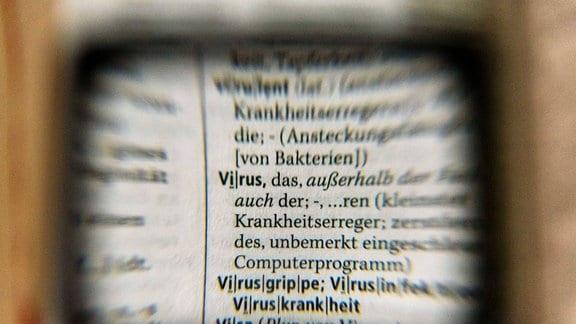 Das Wort Virus ist durch eine Lupe im Wörterbuch zu sehen.