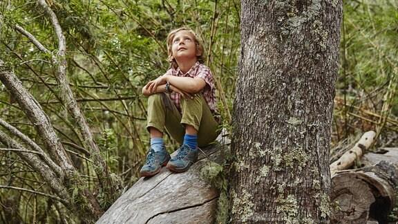 Junge sitzt im Wad auf einem Baumstamm