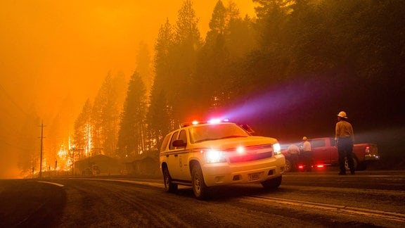 Feuerwehrauto vor brennenden Bäumen