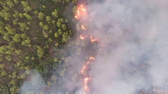 Waldbrände auf Euböa von einer Drohne aus
