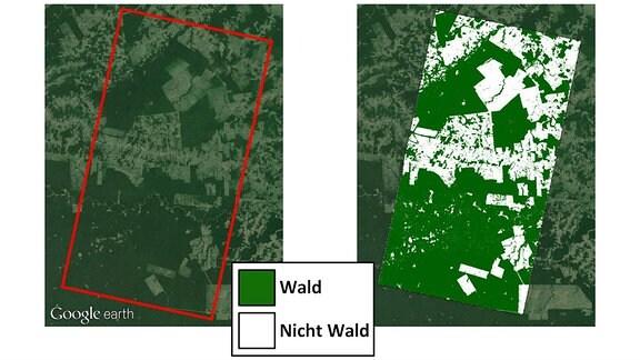 TDX-Waldkarte Abholzung im Amazonas