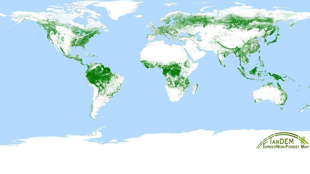 Waldkarte Aus Dem Weltall Auf Einem Drittel Der Landflache Stehen