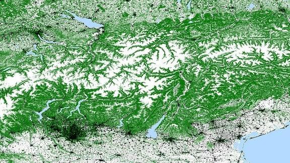 TDX-Waldkarte Alpen