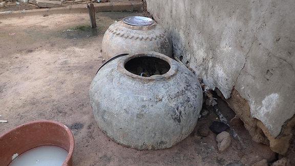 Wasserspeicher, in denen Tigermücken-Larven hereanwachsen