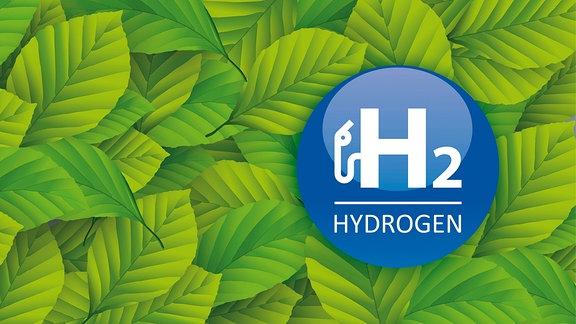 H2-Hydrogen-Schriftzug auf grünen Blättern