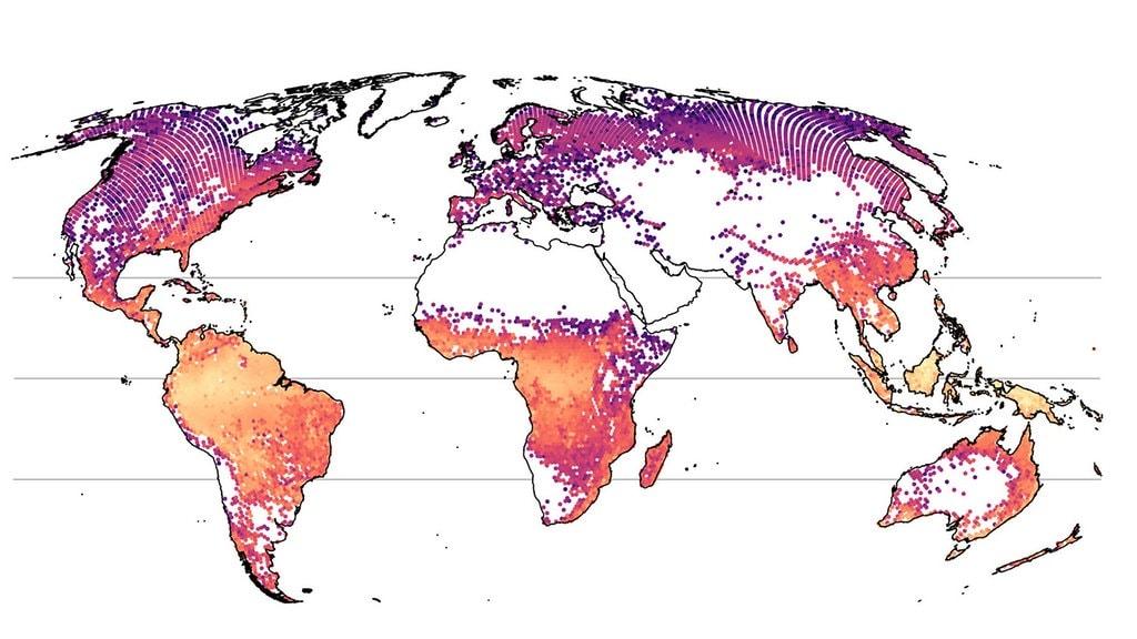 Die Welt Karte.Forscher Aus Halle Und Leipzig Errechnen Die Welt Waldkarte
