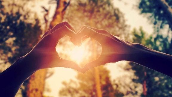 Hände in Form von Liebe Herz