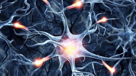 Abbildung von Neuronen auf einem farbigen Hintergrund