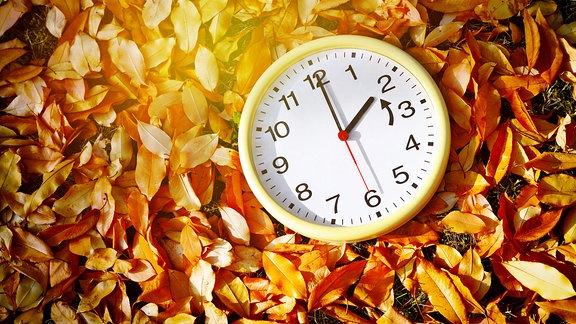 Symbolbild - Zeitumstellung - Zeigeruhr auf buntem Herbstlaub