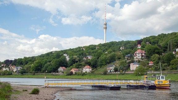Blick über die Elbe Richtung Wachwitz zum Dresdner Fernsehturm. Am blauen Himmel ziehen große Wolken entlang.