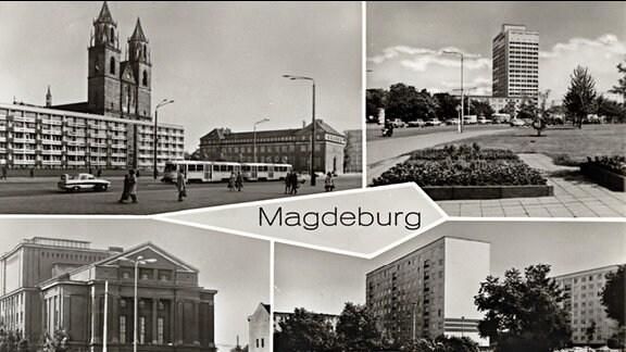 Viergeteilte Postkarte von Magdeburg in Schwarz-weiß. Zu sehen sind unter anderem der Magdeburger Dom mit Plattenbau davor, rechts die damalige Filiale der DDR-Staatsbank; mehrere Plattenbauten sowie das Opernhaus