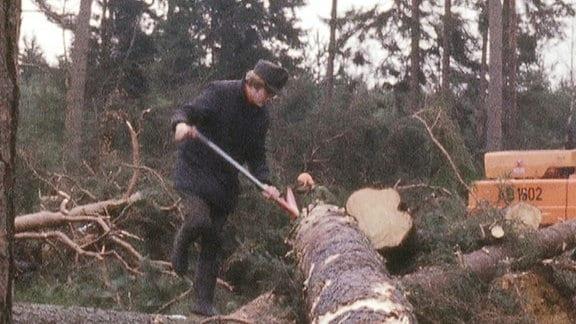 Forstarbeiter mit Axt begutachtet Sturmschäden im Wald.
