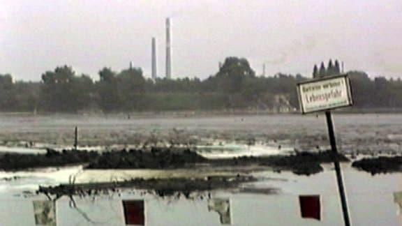 Bitterfeld Umweltverschmutzung